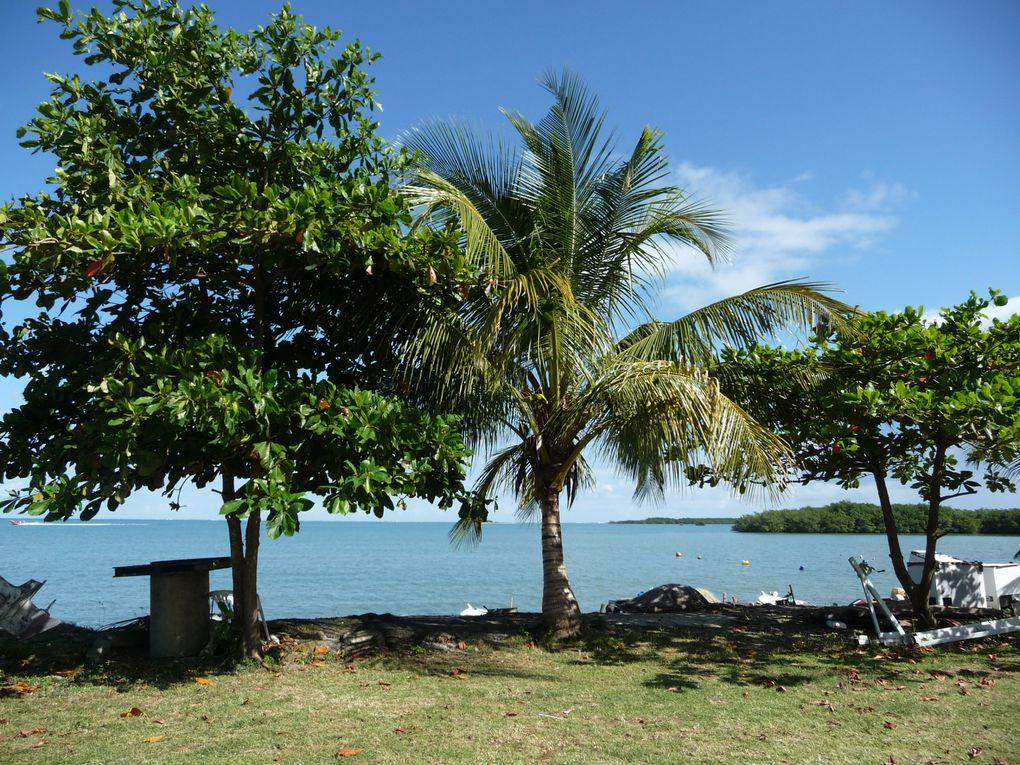 Balade en Guadeloupe.Janvier 2013.