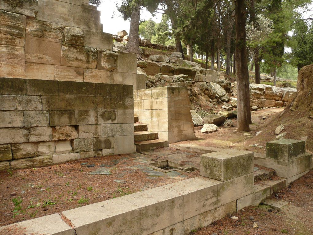 Cnossos ou Knossos (en grec ancien Κνωσός / Knôsós)- Crète