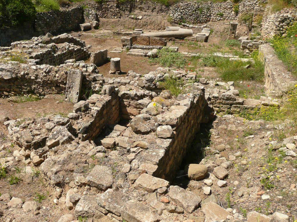 Basilique - Odéon - Codes des lois - Prétoire - Temple d'apollon - Temple des divinités Egyptiennes