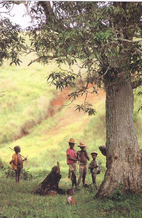 Pour les amis de TOPAZA, agir pour Madagascar c'est d'abord aider les Malgaches à être les acteurs de leur développement.