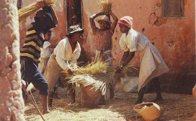 Madagascar, île immense aux mille visages, s'offre sans pudeur à qui sait l'étreindre.