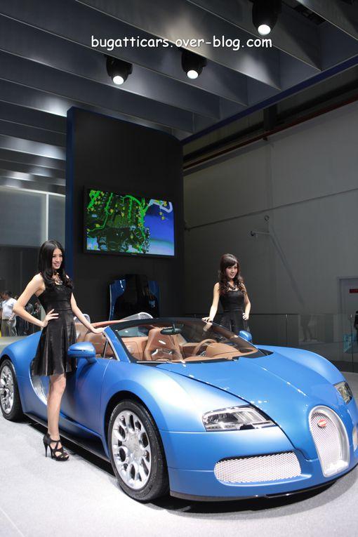 Album - Salon-Pekin-2010