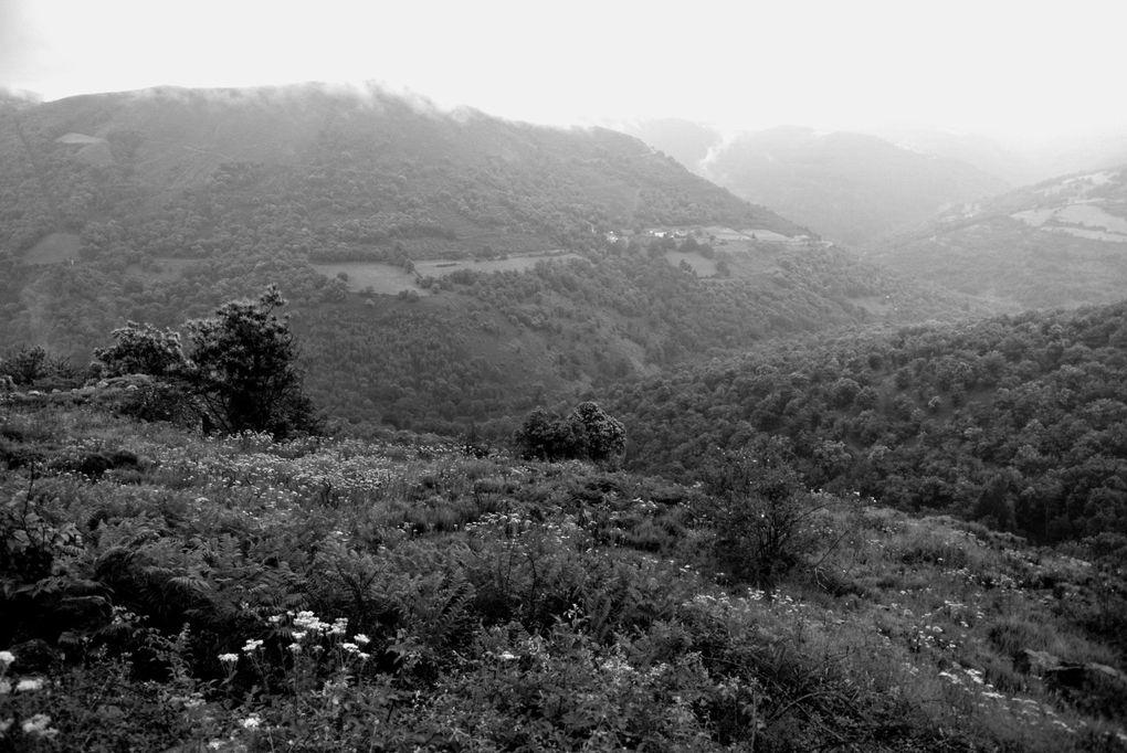 Quelques photos de la sortie du RTMC dans l'est du massif central en Juin 2012