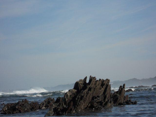 paysages et milieux sympas que jai pu explorer lors d'une partie de pêche et autre...