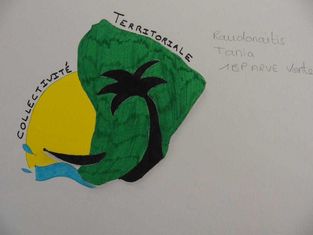 Réalisations des élèves de 1 Bac Pro ARVE pour le Concours sur le logo de la Collectivité Territoriale (Guyane Française)