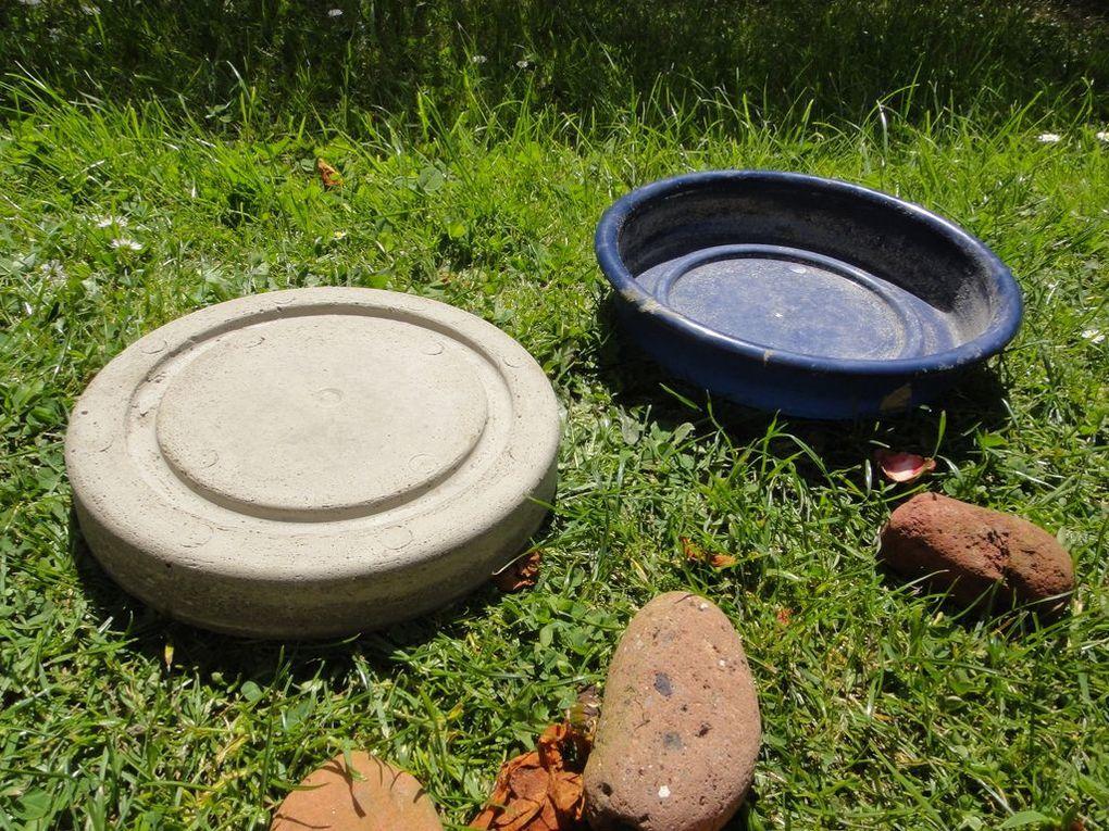 L'art de faire soi-même la déco de son jardin en Béton. Inspiration des éditions de Saxe