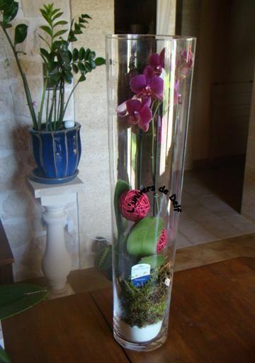 Album - Album-fleurs