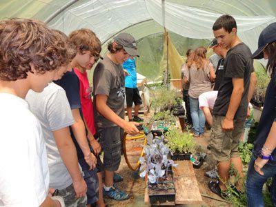 Les 4ème et 3ème de Baleone visitent l'exploitation maraîchère bio de Sebastien Bonardi à Tavera. Crédits photos : droits réservés