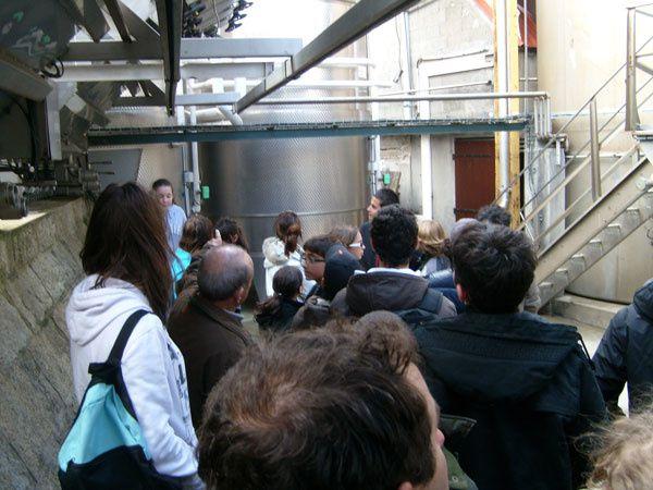 Les 4èmes du Collège de Levie découvrent la fabrication du vin au Domaine Fiumicicoli. Visite à l'appui, Monsieur Andreani, le propriétaire, leur a présenté les différentes facettes de son métier.Crédit photos : CDA2A