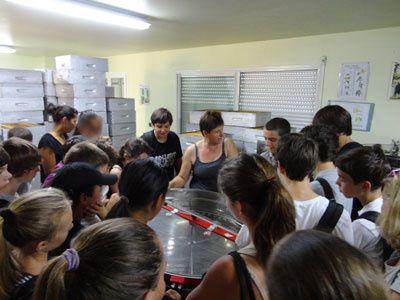 Visite des 5ème et 4ème du Collège Fesch chez une apicultrice à Vero.Crédits photos : droits réservés