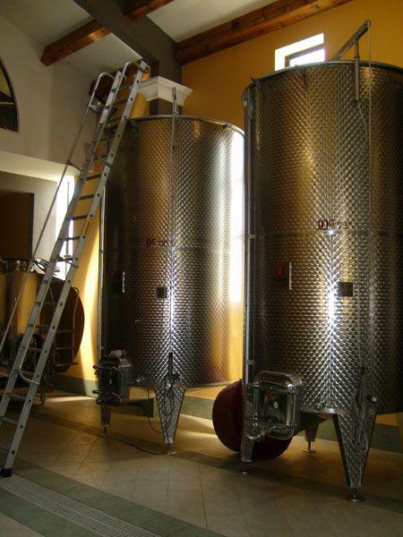La visite du Clos d'Alzeto a permis aux collégiens de Vico de découvrir la fabrication du vin, l'embouteillage et la commercialisation. Ils ont également pu comparer l'évolution du matériel de vinification.Crédit photos : CDA2A