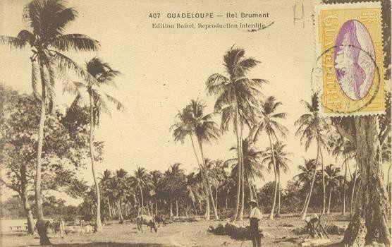La Guadeloupe d'autrefois