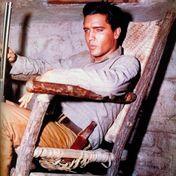 Vrai nom: Elvis Aron PresleySurnom: The KingNationalité: AméricaineNé le 8 Janvier 1935 à Tupelo, MississippiDécedé le 16 Août 1977