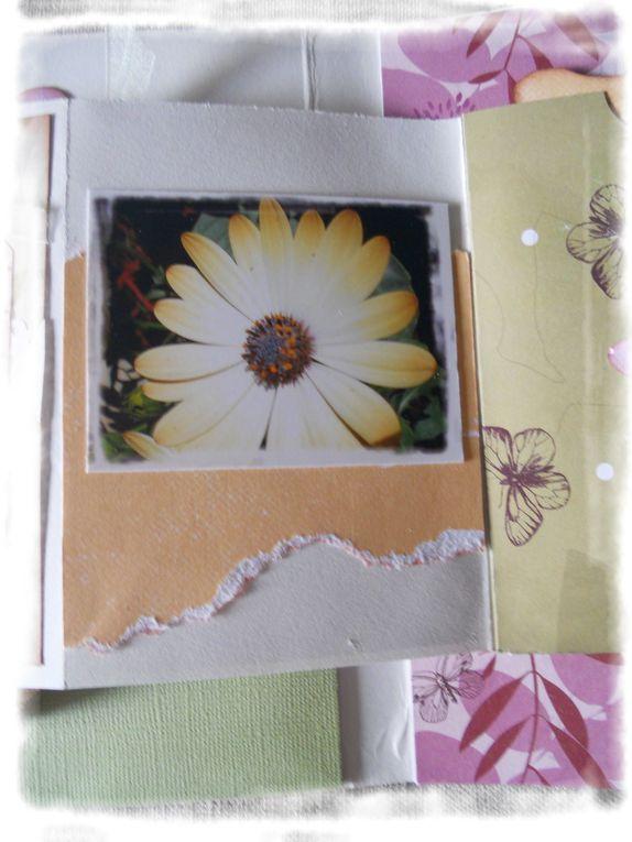 Album - album-printemps