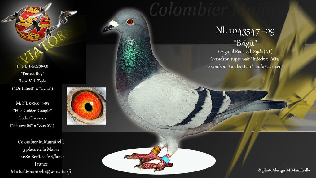 Album - Colonie Martial Maindrelle