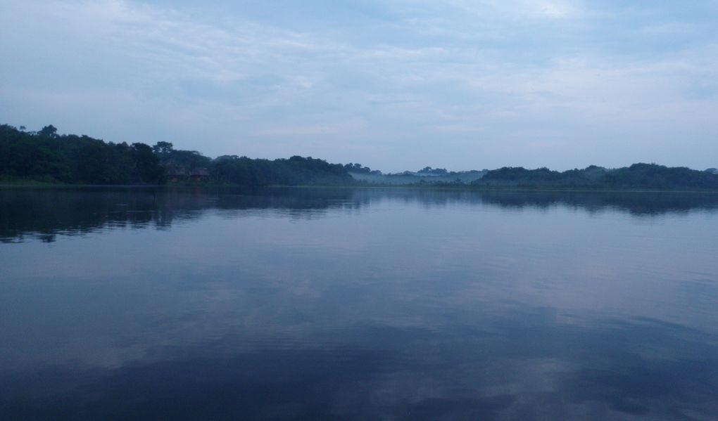 Album - Amazonie Napo Wildlife Center
