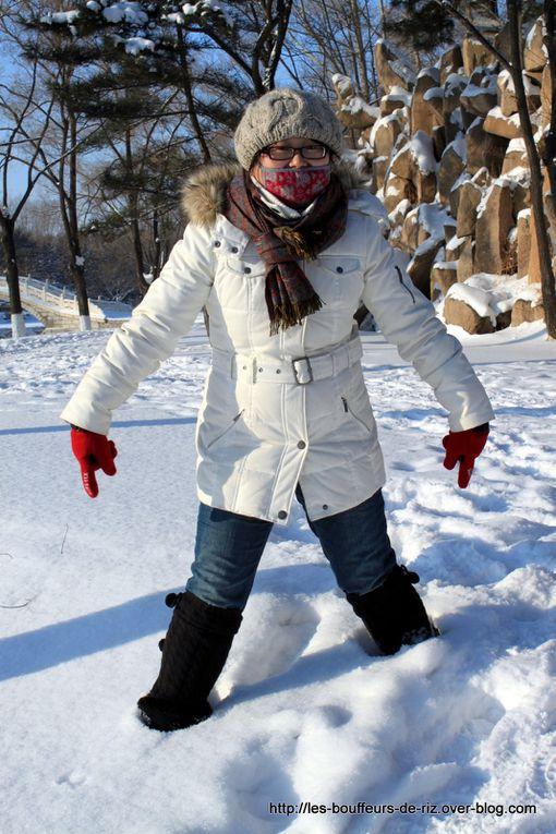 Album - Harbin---neige