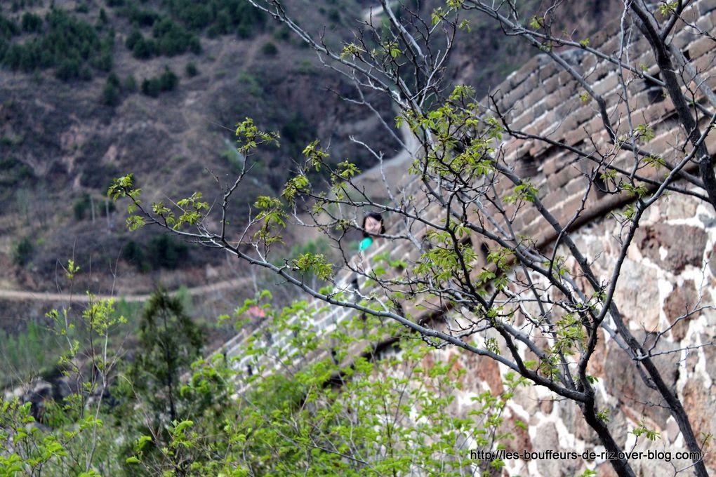 Grande Muraille de Chine près de Pékin et de Chengde