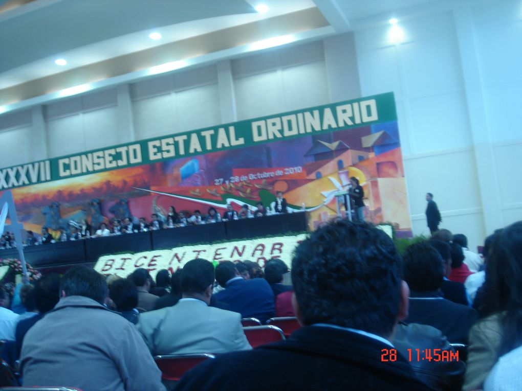 Album - consejo-ordinario-2010