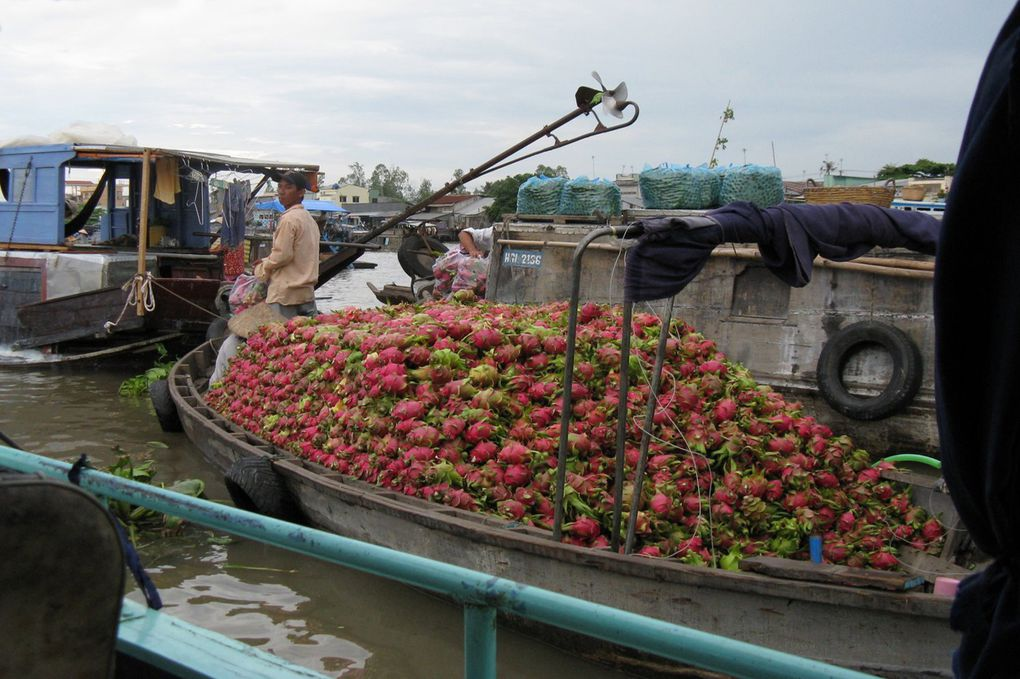 Album - Delta-du-Mekong