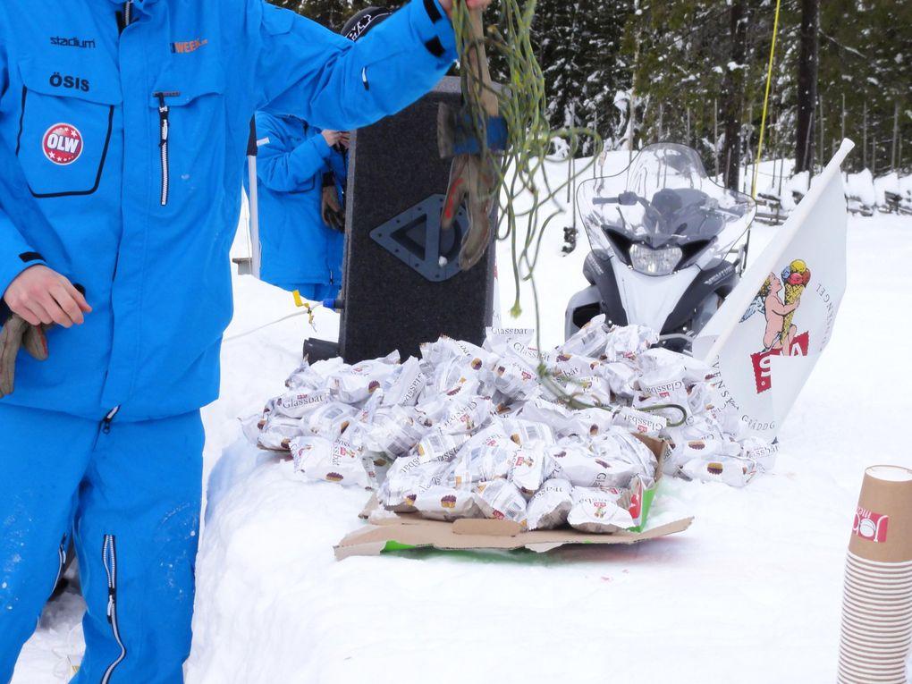 Semaine de ski avec le VIS à Vemdalen du 22 au 28 janvier 2011.