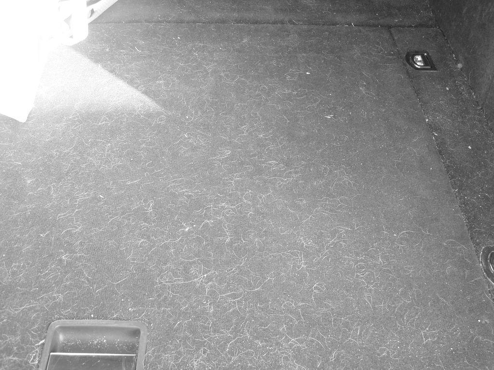nettoyage interieur et extèrieur sur WV touareg.
