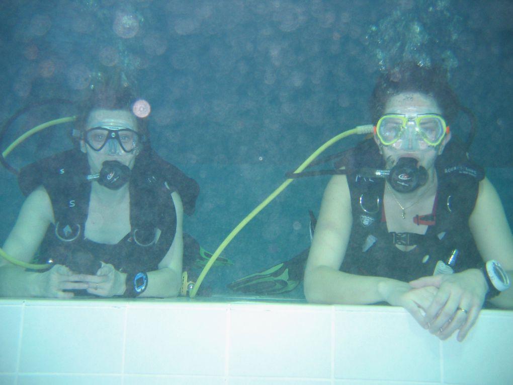 Album - Nemo2010