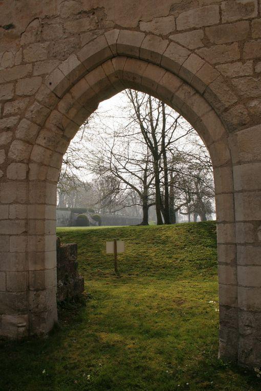 Album - Abbaye de Jumieges
