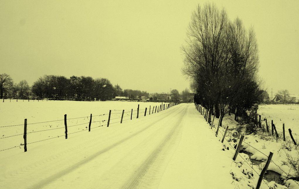 Dans la Boucle d'Anneville entre 15 et 20 cm de neige sont tombés