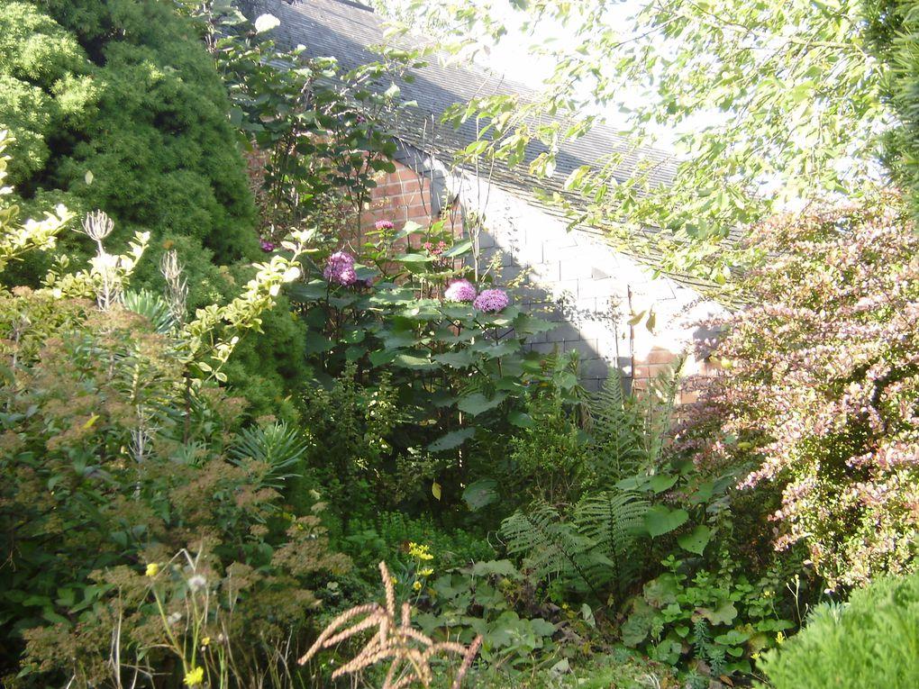 Un jardin en Seine maritime que j'avais adoré il ya dix ans environ ,d'un couple très sympa simple comme j'aime les gens, très courageux !ils ont depuis crée un deuxième jardin très beau,  dommage que le premier soit un peu moins soigné...il n