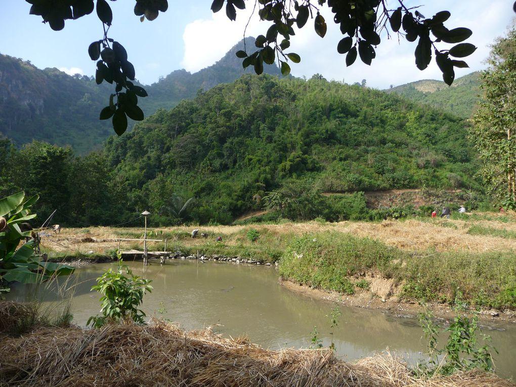 Quelques jours avec nos amis de Nong Khiaw au Laos.