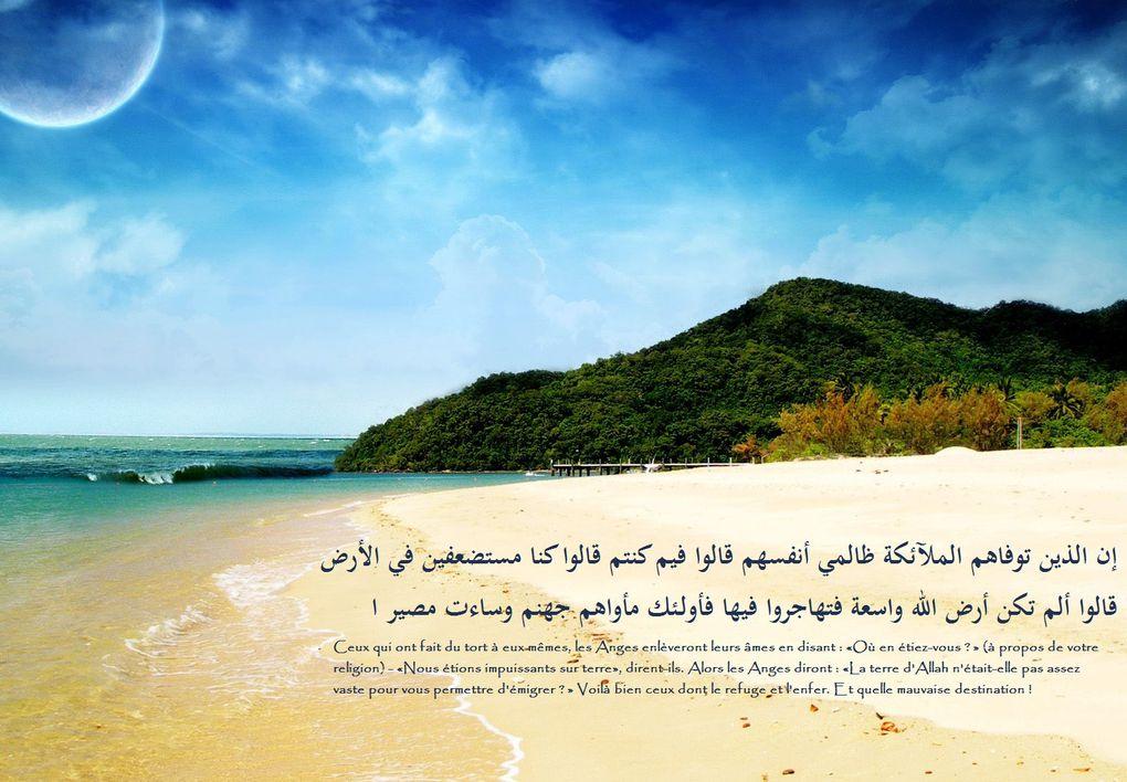 Les images figurants dans les albums ne sont disponibles que pour un usage personnel uniquement. Barakallahoufik.
