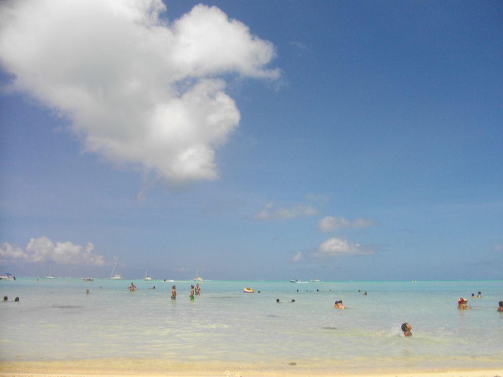 Album - Hawaikinui-2012