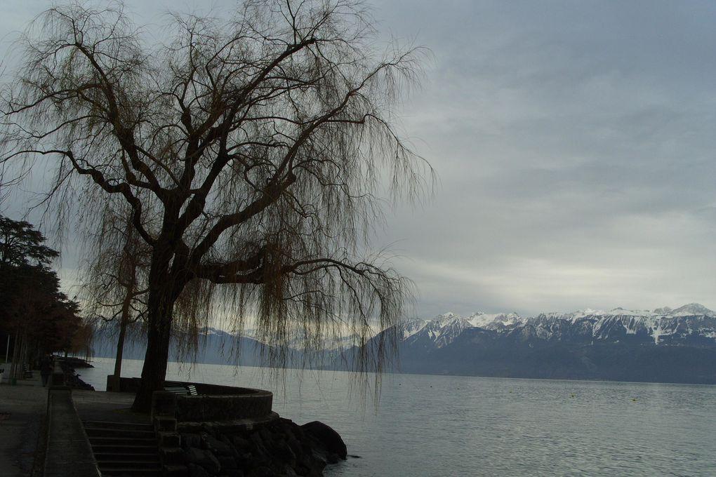 Photos que j'ai prises en Decembre 2012 sous un ciel gris !! Vues du Lac Léman entre Lausanne et Montreux.