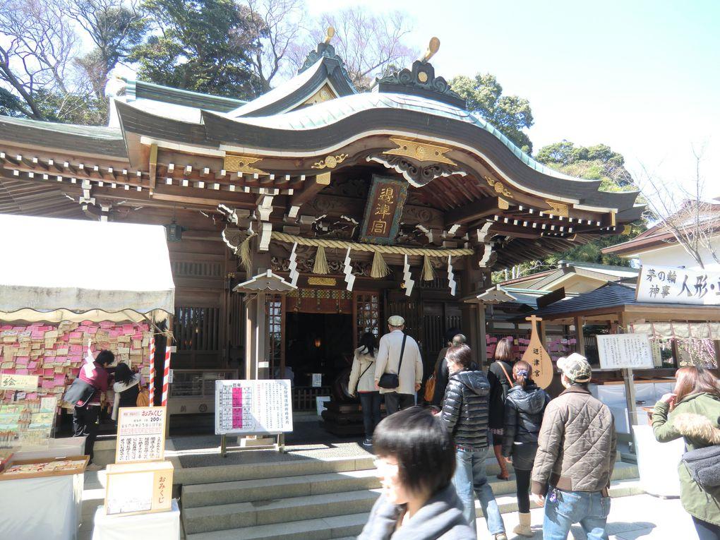 Album - Enoshima