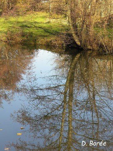 Album - Photos-automne-hiver-2013-2014