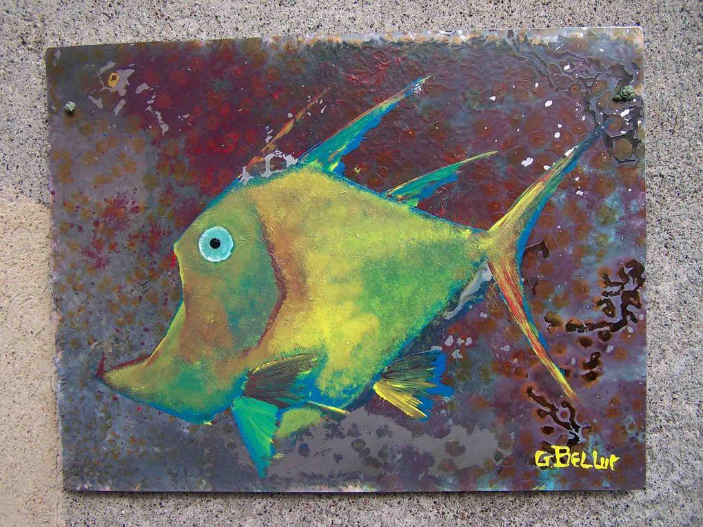 Album - Album poissons plaques 01
