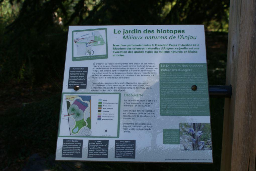 Album - Arboretum-Gaston-Allard