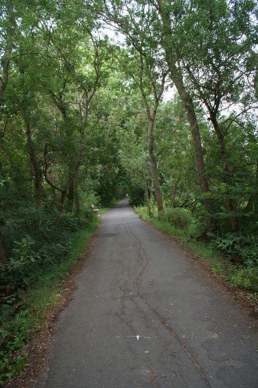 Autre paradis des joggers, marcheurs et Vttistes.