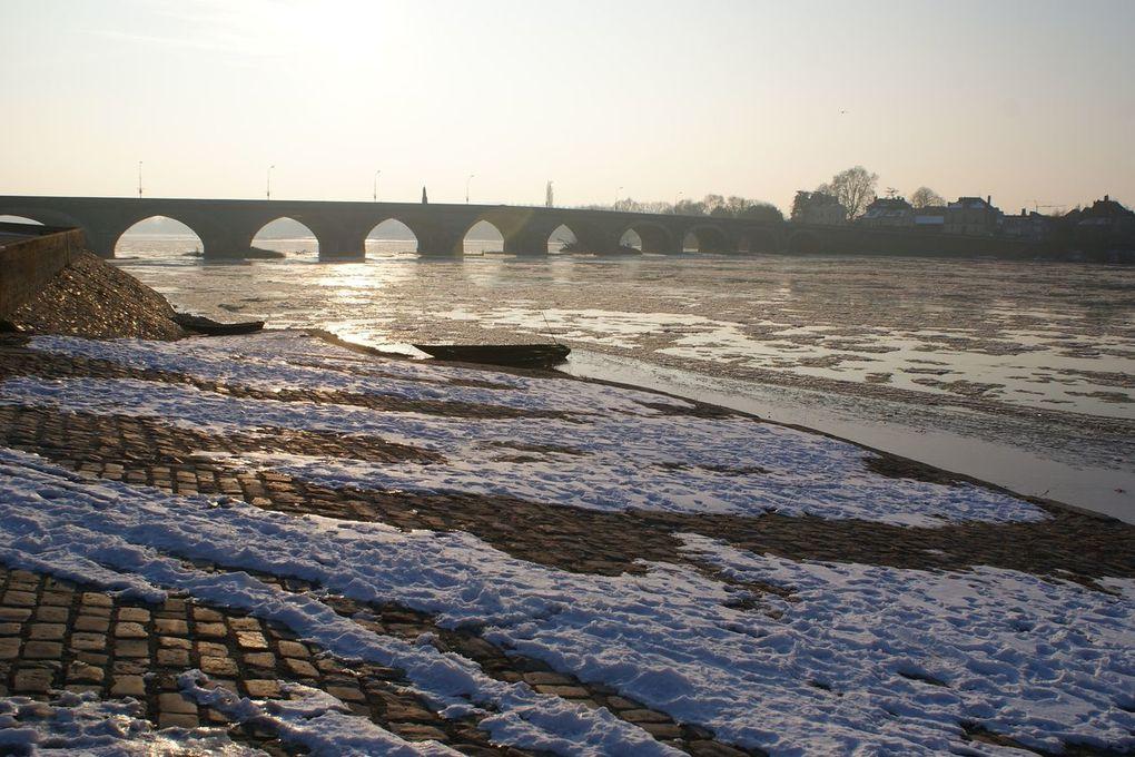 10 Février 2012, la Loire aux Ponts de Cé, Saint-Mathurin sur Loire et la Bohalle.