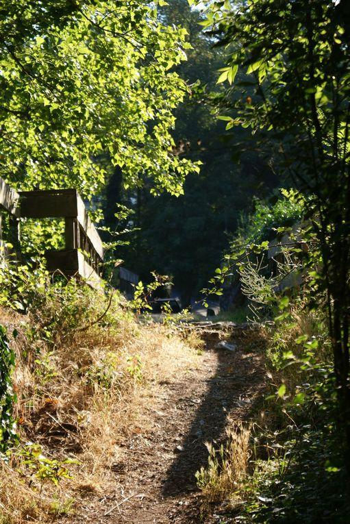 Randonnée de 11 Km entre coteaux et Rivières à Saint Lambert du Lattay