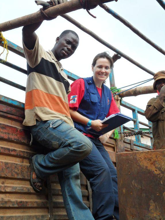 Chargement de matériaux sur un camion pour Ango. Ca nous a pris 12heures pour charger 10 tonnes.