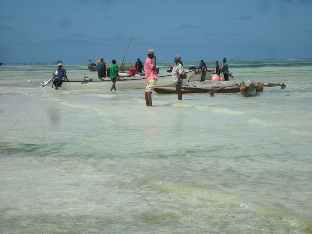 Photos Zanzibar + Goma, RDC