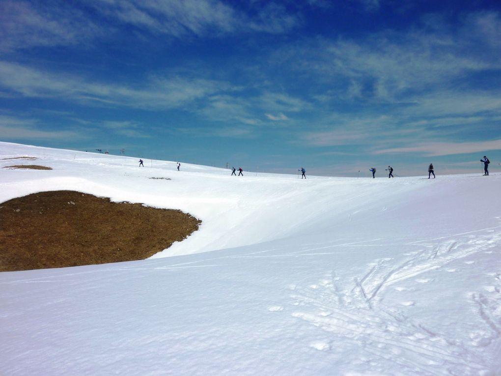 Ski-de-Fond