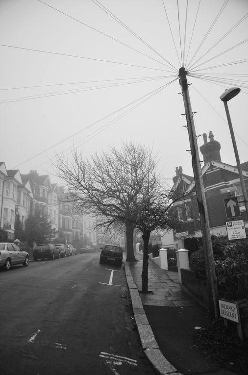 Le brouillard, c'est cette ville. Les yeux ouverts,j'avance. Il fait sombre. Je ressens. C'est comme être transpercé par de fines lames aiguisées qui laissent derrière elles une sensation de froid.