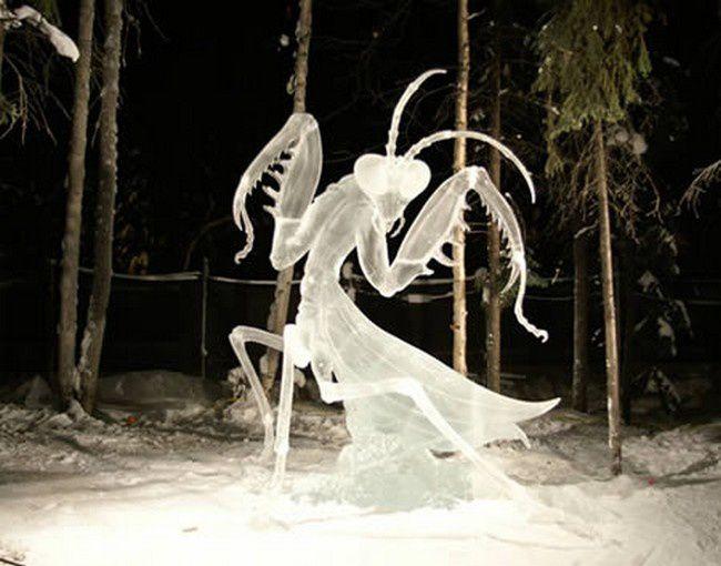 Album - Sculptures sur glace