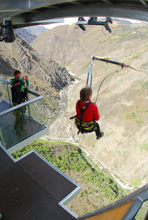 Album - NZ Bungy Jumping