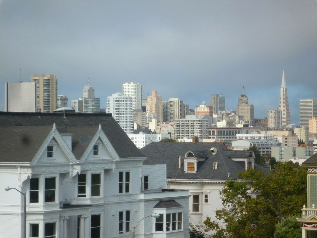 Album - SAN-FRANCISCO