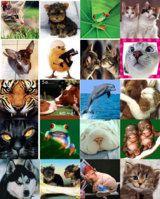 Estos son collages de muchas cosas, creo que os gustaran mucho os lo podeis guardar son muy bonitos!! :) &#x3B;)