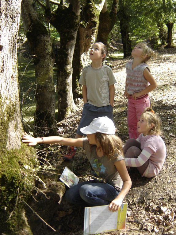 Les ateliers du Club Marais ont permis aux enfants de découvrir de nombreux thèmes autour du marais de sa faune et sa flore ainsi que des animaux de la ferme.